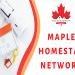Maple Homestay Network - Cầu nối vững chắc giữa chủ nhà và bạn