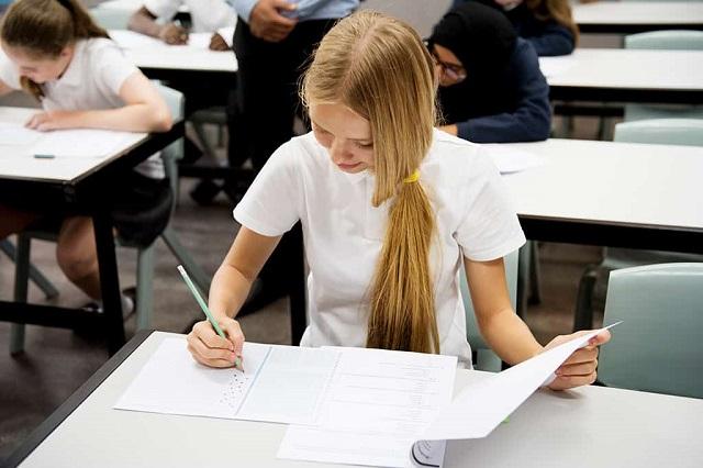 Westfield Education