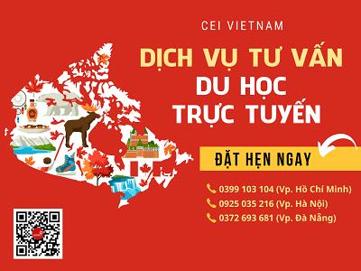 Online consulting CEI Vietnam