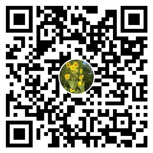 THÔNG BÁO: VĂN PHÒNG CEI VIETNAM CHUYỂN SANG LÀM VIỆC TRỰC TUYẾN (TỪ 30/03/2020) 7