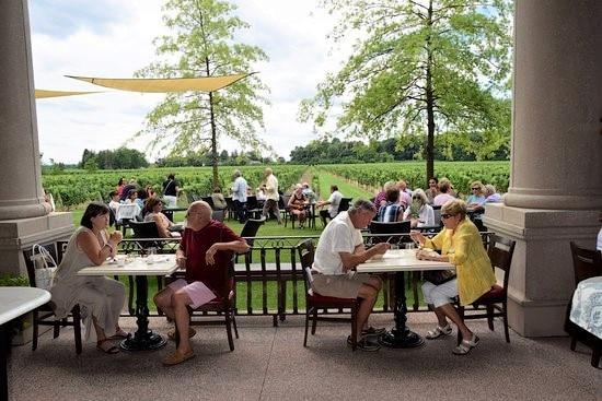 Vineyard view restaurant