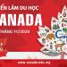 Triển lãm Du học Canada tháng 11/2020