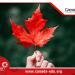 Canada chấp thuận 56.000 giấy phép du học cho sinh viên quốc tế, bạn đã biết?