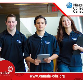 Chương trình học bổng siêu hấp dẫn từ Niagara College