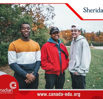 Học bổng cho chương trình Chứng chỉ sau đại học Pilon School of Business (PSB) tại Sheridan College