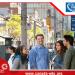 Hội thảo trực tuyến: Hành Trang Chuẩn Bị Vào Trường Cao Đẳng Lớn Nhất Toronto -  George Brown College